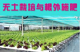 无土栽培与根外施肥