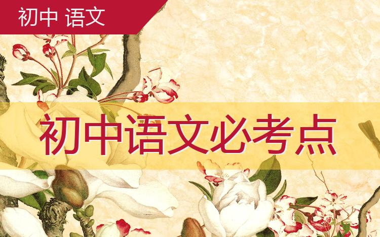 初中语文必考点